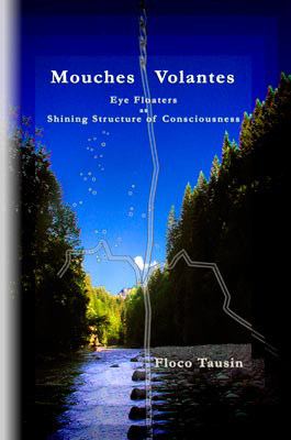 The book/ebook about the spiritual dimension of eye floaters: Mouches Volantes - Eye Floaters as Shining Structure of Consciousness.